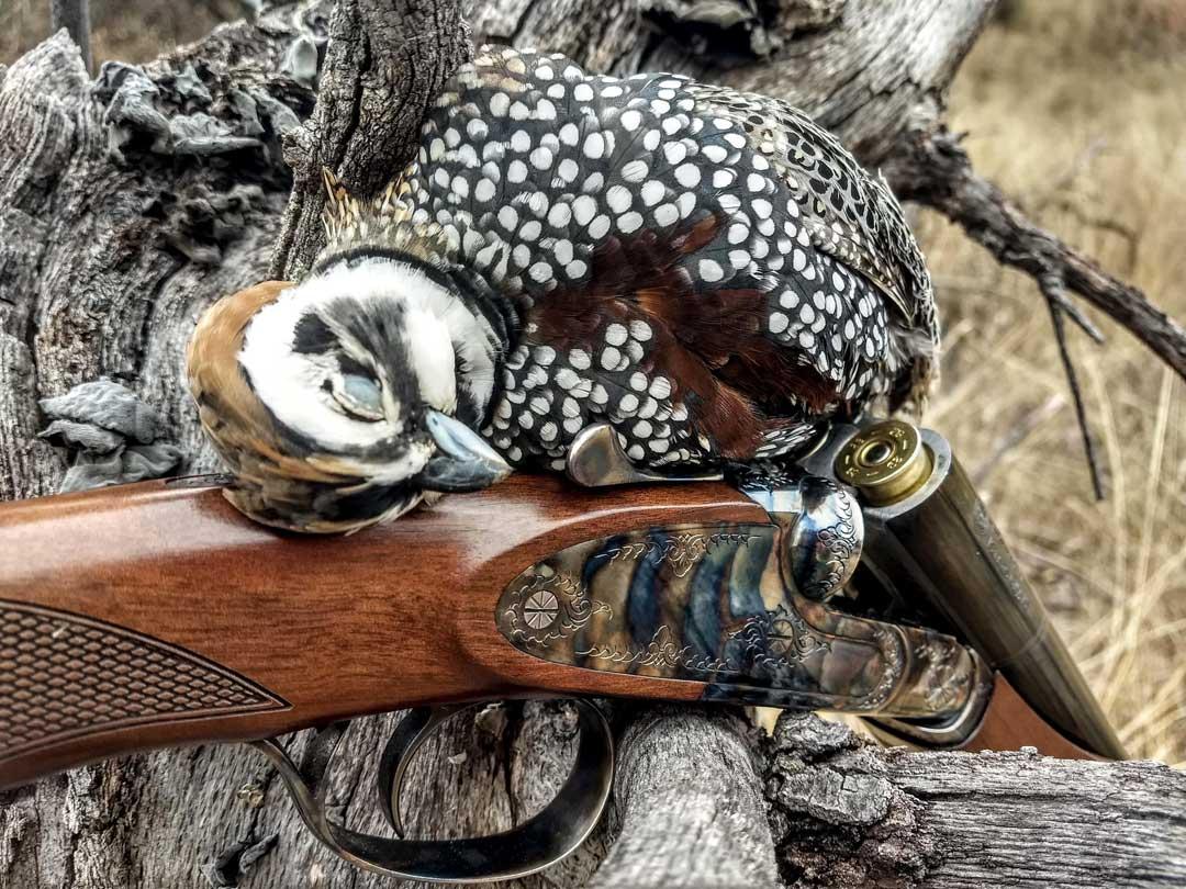 matt russell arizona quail hunter